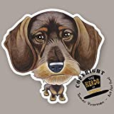 THE HEADS Magnet Dog Lasting Wire-haired Dachshund by Tommi Vuorinen