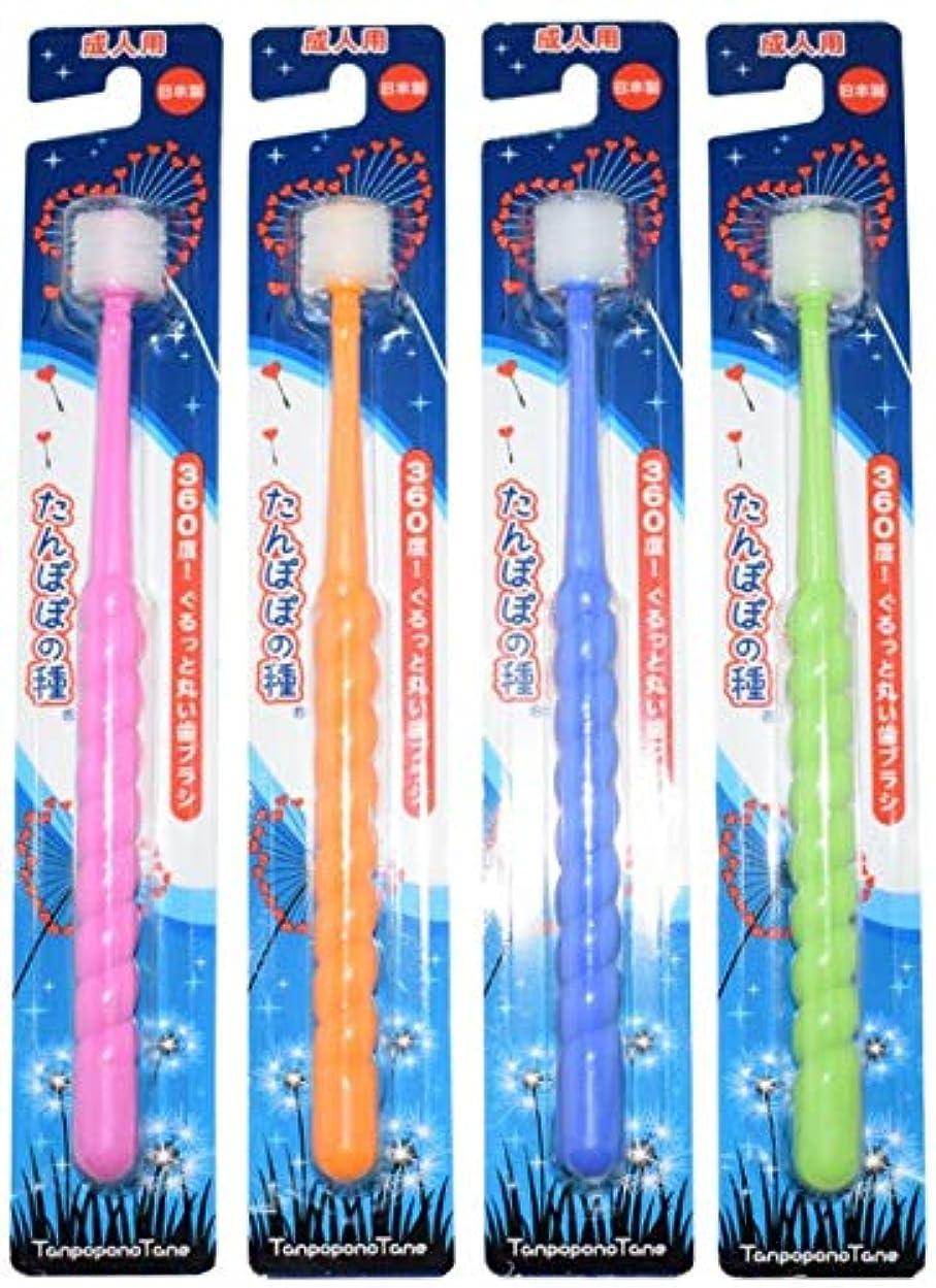 赤ちゃんピットスキーたんぽぽの種 360度ぐるっと丸い歯ブラシ 極細毛 (成人用 4本セット)