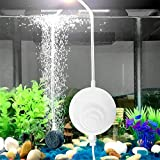 uksunvi Acuario Nano Air Pump Silent Oxygen Mini Air Pump, la Nueva pequeña Bomba de oxígeno 4.5 ml / min 1w Bomba de oxígeno con Piedra de Aire y Tubo de Aire de Silicona (Blanco)