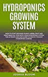 HYDROPONICS GROWING SYSTEM: How to start growing plants, herbs, fruit and vegetables all year with your hydroponics system. The ultimate and safe guide ... diy hydroponic garden. (Italian Edition)