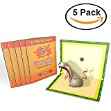 Mouse Glue Trap, Extra Large Rat Glue Traps, New Version Strongly Adhesive, Best Peanut Butter Scented Mouse Traps Glue Board for Mice & Rodent &Pests & Bug & Ant & Spider 5 Packs