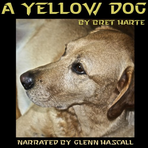 A Yellow Dog cover art