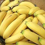 南国フルーツ フィリピン産バナナ4kg