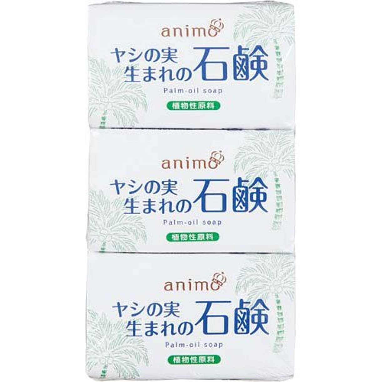 亜熱帯性差別確かなロケット石鹸 ヤシの実石鹸 80g×3個×10パック