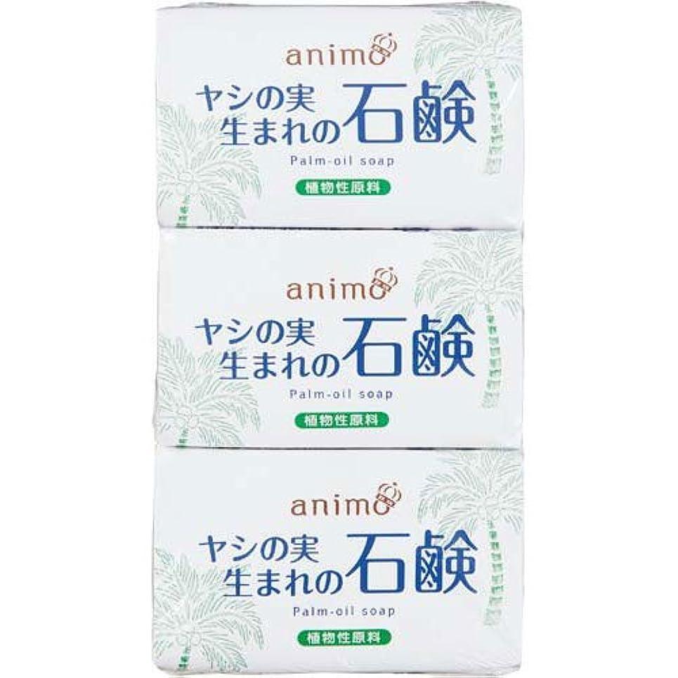 要求する破産メロンロケット石鹸 ヤシの実石鹸 80g×3個×10パック