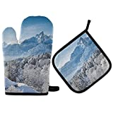 XCNGG Guantes para microondas Oven Mitts and Pot Holders 2pcs Set,Heat Resistant Soft Lining with Non-Slip Surface Oven Gloves,Perfect for Kitchen Baking BBQ Grilling- Winter Cold Snow Ice Nature Wint