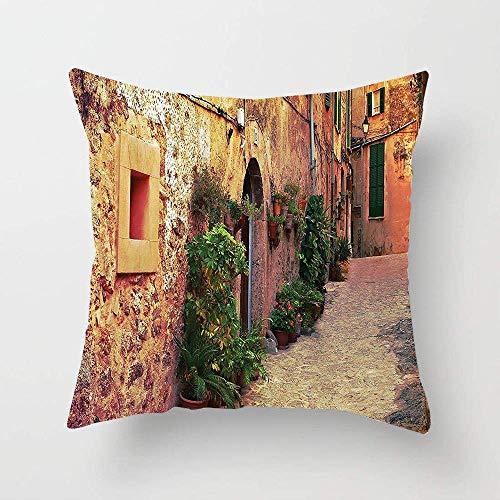 NA Ancient Street en Valldemossa Village Mallorca España Vintage Door Road Imagen turística Square Throw Pillow Cover Funda de cojín para sofá Dormitorio Coche
