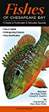 Fishes of Chesapeake Bay: A Guide to Freshwater & Saltwater Species (Quick Reference Guides)