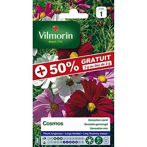 Vilmorin Sachet graines Cosmos à Grande Fleurs Varié +50% Gratuit -Cosmos bipinnatus