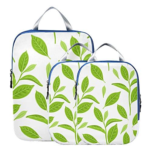 Lot de 3 sachets de compression extensibles en forme de feuilles de thé vert