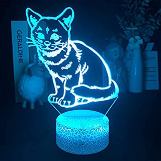 Cat 3D Night Light for Kids Gifts, Led Illusion Lamp for Room Decor & Nursery, Girls Birthday and Holiday Gift-16 Changing...