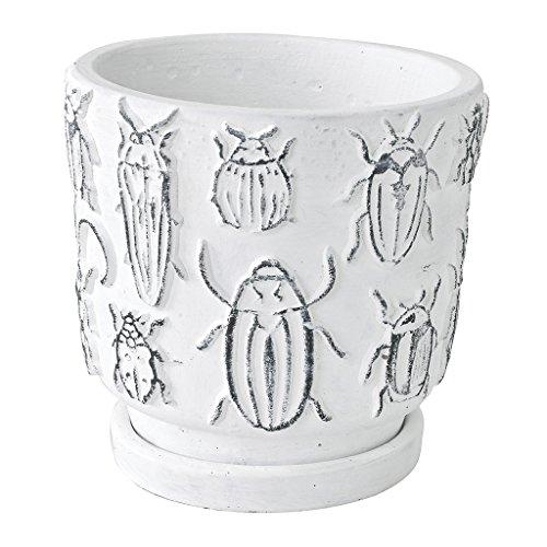 SPICE OF LIFE(スパイス) 植木鉢 レリーフプランター インセクト 昆虫 ホワイト Lサイズ 直径12.5×12.5cm セメント 底穴あり 皿付き CCGH1853
