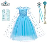 Princess Costumes Elsa Dress Birthday Party Dress Up for Little Girls with Wig,Crown,Mace,Gloves Accessories 3T 4T(D56 Elsa,110cm)