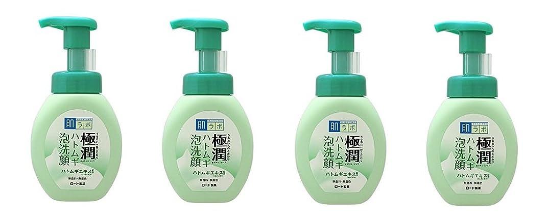 適切な乱気流インディカ【まとめ買い】肌ラボ 極潤 ハトムギ泡洗顔 160mL×4個