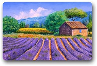 Lavender Field Art Paints Customized Doormat Entrance Mat Floor Mat Rug Indoor/Front Door/Bathroom/Kitchen and Living Room...