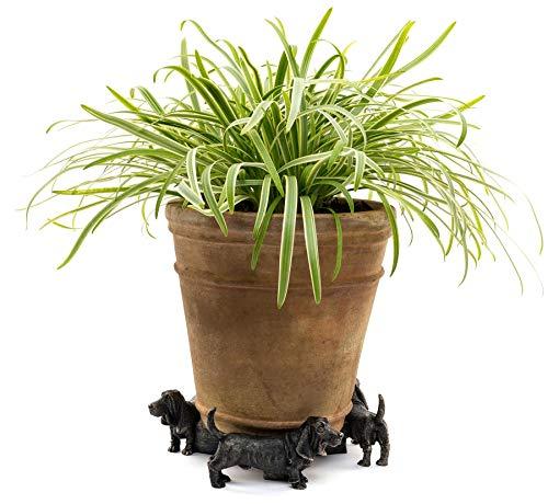 Potty Feet Lot de 3 pieds de pot de fleurs en forme de basset - Décoration faite à la main