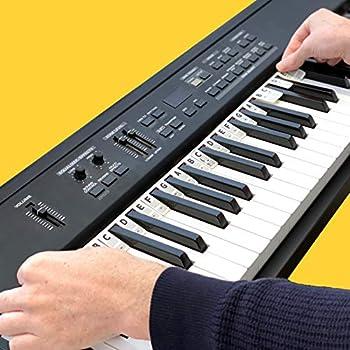 The Piano Rake - The NEW alternative to messy piano key stickers