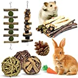 ERKOON Rabbit Toys, Hamster Small Animals Treats Bunny Chinchilla Chew Toy for Teeth Natural Apple Wood Sticks Boredom Breaker for Guinea Pigs Chinchillas Gerbils Molar
