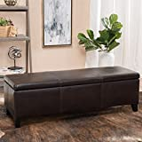 Christopher Knight Home Glouster PU Storage Ottoman, Brown