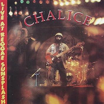 Chalice: Live at Reggae Sunsplash