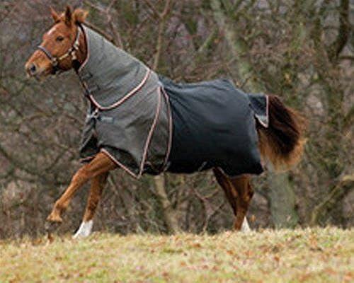 Horseware Rambo Optimo Collier partie sans rembourrage XL noir Orange & noir