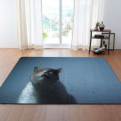 NHhuai Alfombras Salon Grandes - Alfombra habitación Dormitorio Lavables Comedor Alfombra de Sala de Estar de Gato Animal Adecuada para el Comedor del Dormitorio