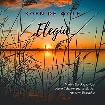 Koen De Wolf: Elegia