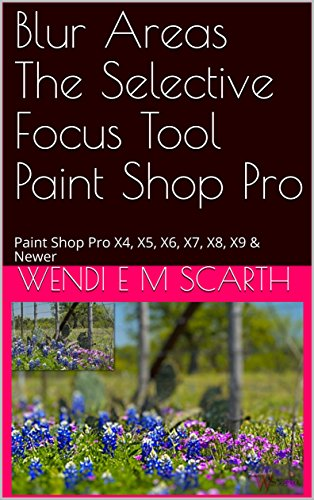 Blur Areas The Selective Focus Tool Paint Shop Pro: Paint Shop Pro X4, X5, X6, X7, X8, X9 & newer (Paint Shop Pro Made Easy Book 375) (English Edition)