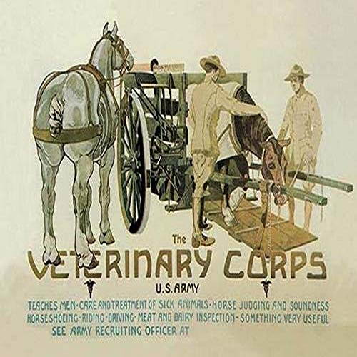 Recruiting poster for a new medical branch of the US army to deal with animals The US Army Veterinary Corps was established 3 June 1916 with the National Defense Act At the beginning of World War I t