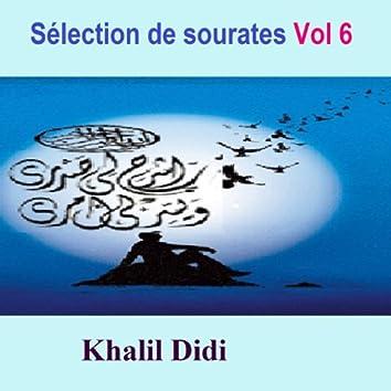 Sélection de Sourates, vol. 6 (Quran - coran - islam)