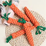 5pcs New Cute Adorable Pet Chew Dog Toy Straw Carrot For Hamster Guinea Rabbit Rat Animal Supplies Maize Pets