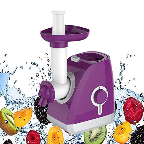 Review Of LOISK Small Portable Fruit Ice Cream Machine Healthy, Simple One Push Operation Home Ice C...