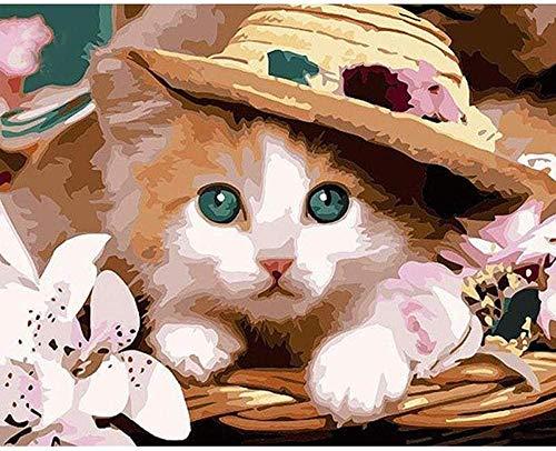 Schilderij op nummer DIY digitale olieverfschilderij kat in hoed afbeelding tekening op canvas 40 x 50 cm