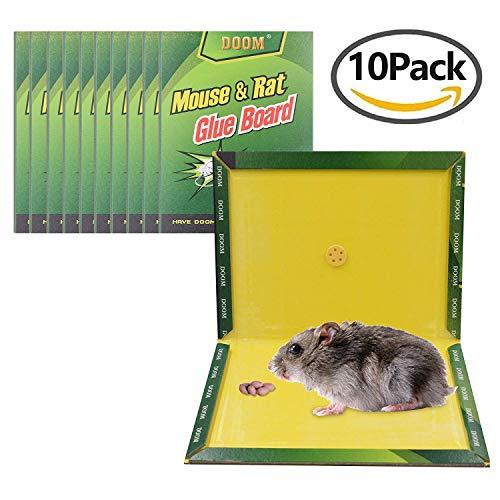Mouse trap, Mouse Glue Boards, Mouse Glue Traps, Mouse Size Glue Traps Sticky Boards by CRANACH (10-Pack)