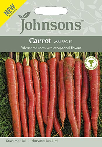 Johnsons Seeds Graines de carotte Malbec F1-1