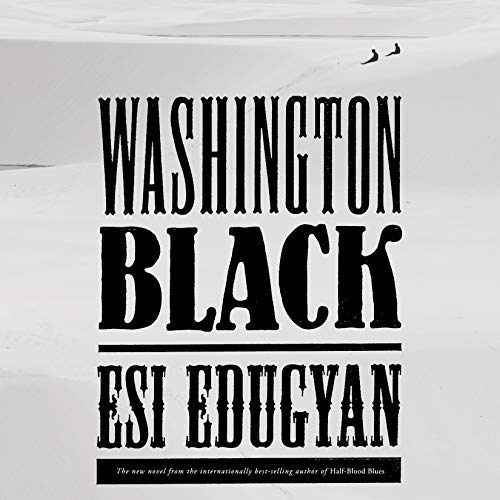 Washington Black audiobook cover art