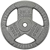 Sporzon! Cast Iron 1-Inch Grip Plate Weight Plate for Strength Training, Weightlifting and Crossfit, Single, Gray