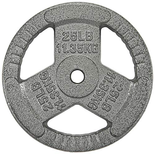 HulkFit 1-inch Iron Plate for Strength Training, Weightlifting and Crossfit, Single (25 Pounds), Silver