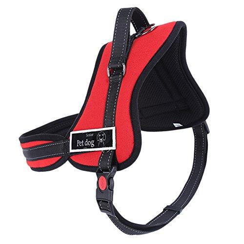 No-Pull-Hundegeschirr Draussen Einstellbar Weich Gepolstert Haustier Hunde Brustgeschirr mit Griff Kontrolle Rot L