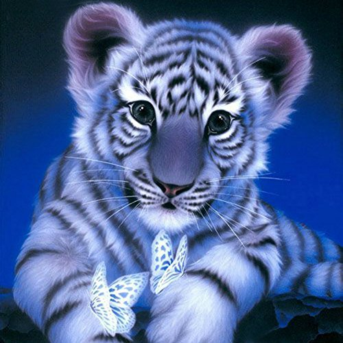 Diamant Painting Bilder DIY 5D Diamant Malerei Diamond Painting Kits Full Drill Tiger (Tiger 30X30)