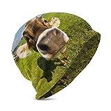 Kaswtrb Papel Tapiz Escritorio Vaca Bebé Sombrero de Punto Diseño de Flor de Trigo Suave y cálido Sombrero Lindo Gorras para niños Niñas de 3 a