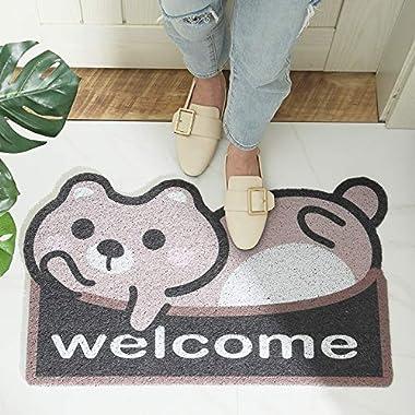 Household Bag pad Leiwenkai Cartoon Blowing Sand Dust Door Mats Home Home Entrance Door Dawdle Resistant Wire Loop Slip Mat (