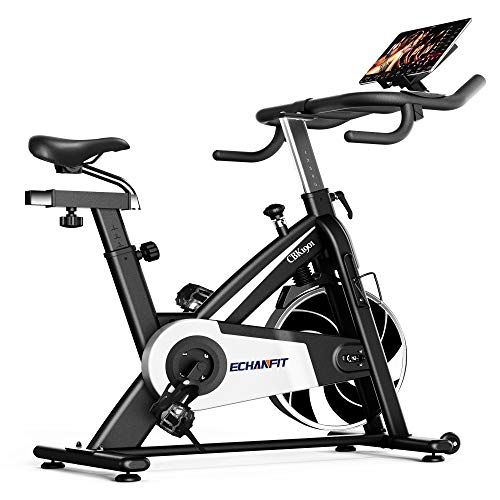 ECHANFIT Silent Belt Drive Indoor Spin Bike