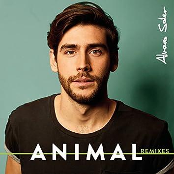 Animal (Remixes)