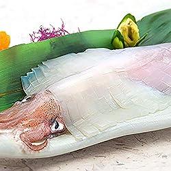 イカ 刺身用 2杯入り 呼子イカ 姿造りいか 玄界灘産