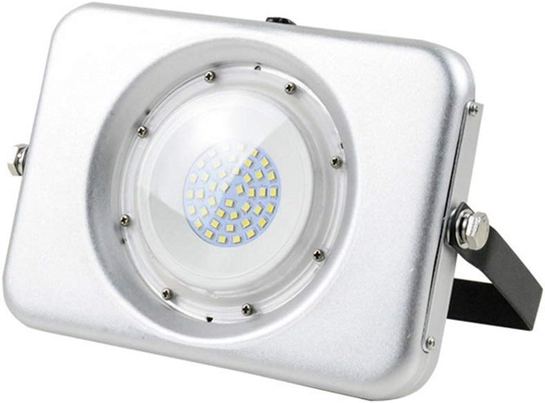 Sicher Strahler Mit,Wasserdichte Ultralight-Scheinwerfer-Café-Stadion-Projektionslampe Im Freien für Die Gartenparty (Farbe   Positive Weiß Light, gre   20w)