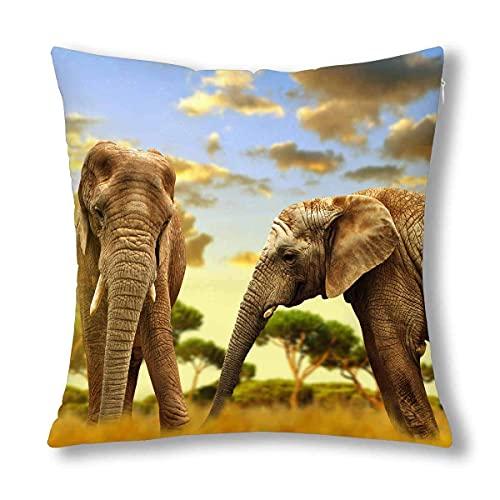 HZLM Funda de cojín decorativa de 45 x 45 cm, diseño de elefantes africanos en la sabana al atardecer