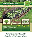 divchi net grow tunnel - copertura per piante, protezione duratura contro uccelli, cervi e altri parassiti