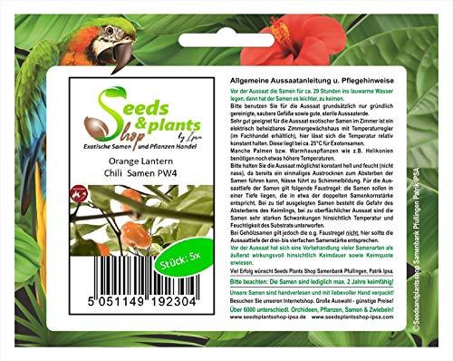 Stk - 5x Orange Lantern Chili Garten Pflanzen - Samen PW4 - Seeds Plants Shop Samenbank Pfullingen Patrik Ipsa