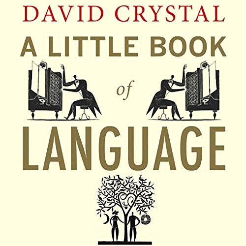 A Little Book of Language audiobook cover art